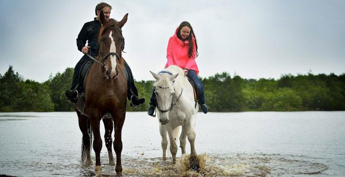 Катание на лошадях простатит лучшие витамины при простатите
